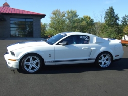 2007 ford shelby pics frazin 025a_800x600